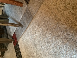 Cleaning Tips : Carpet